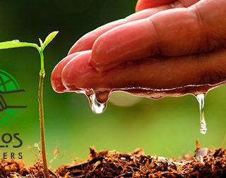 3 Reasons Church Planting Matters